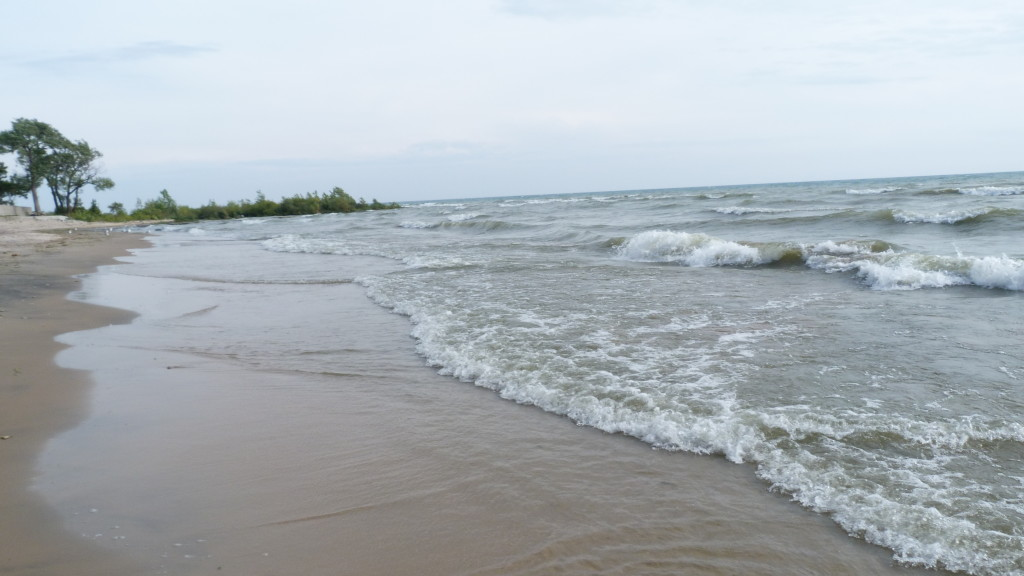 Cottage Rental Weeks Availability Rent Sandyview
